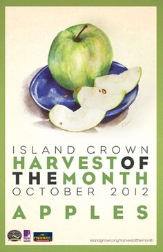 October poster of the monthly Farm to School Campaign on Martha's Vineyard spearhead by the Island Grown Schools organization.  Designed by HDS with illustrations by local artist Ashley Chase.   www.islandgrown.org/harvestofthemonth     www.hayesdesignstudios.com