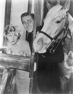 Mister Ed! I loved this show growing up.