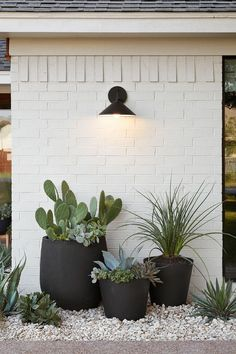 Succulents in pots paired with painted bricks | desert landscaping