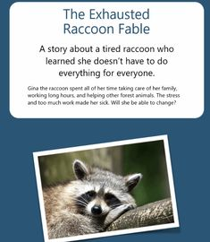 The Exhausted Raccoon Fable. Hypnotherapy in Melbourne to reduce stress, anxiety, depression, weight loss and quit smoking, with one of the best hypnosis Take Care Of Me, Take Care Of Yourself, Life Lesson Quotes, Life Lessons, Kids Running, Hypnotherapy, Getting Out Of Bed, Forest Animals, Reduce Stress