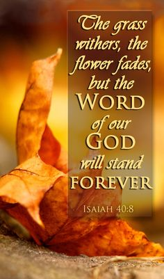Isaiah 40:8 Bible verse.  We have complete assurance that the living Word of God is true, reliable, saving and is forever.