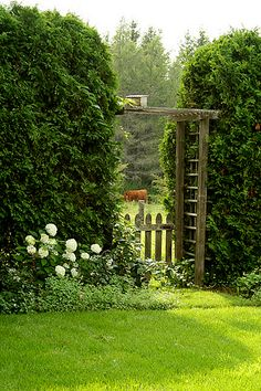 A pick through the fence by nestdecorating, via Flickr