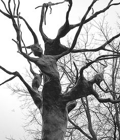 tree spirits - hopefully not top-heavy