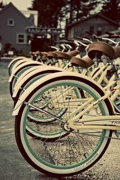 vintage bikes in a line