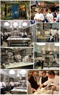 Restaurant Kitchen Photography chef in restaurant kitchen preparing gourmet dishes | restaurant