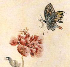현재 심사정, 벌과 나비와 양귀비 Shim Sajung 1707-1769 Josun Dynasty Korea