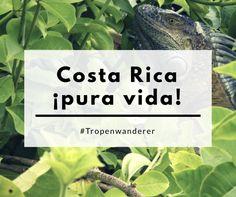 """Costa Rica - ¡pura vida! Was bedeutet dieses """"pura vida"""" wirklich? Unseren Erklärungsversuch findest du hier.  #CostaRica #PuraVida #Erklärung #Ticos #Natur #Artenvielfalt #Reisen #Tropenwanderer"""