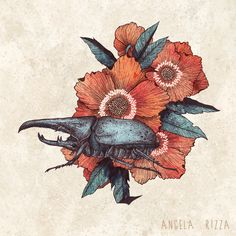 Hercules Beetle - Angela Rizza