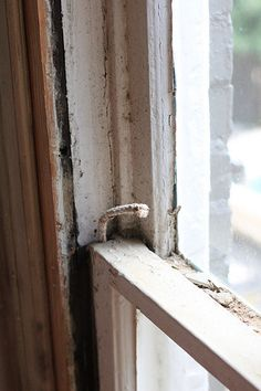 Window Restoration: How To Re-Rope Sash Cord - Old Town Home. Step-by-step tutorial. #closingthegap