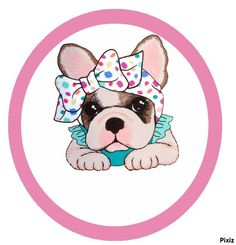 frenchie in a now Animal Drawings, Cute Drawings, French Bulldog Art, Puppy Images, Puppy Party, Dog Illustration, Cute Cartoon, Animals And Pets, Fur Babies