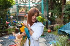 Michele Raffin has hundreds of birds in her California backyard, also known as Pandemonium Aviaries, where she cares for talkative parrots and is breeding endangered pigeons.