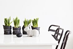 strak pasen - love the idea to use wrapping insted of flower pots