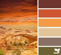 Sherwin Williams: SW6419 Saguaro  SW2836 Quartersawn Oak SW7692 Cupola Yellow SW6670 Gold Crest SW6883 Raucous Orange SW7592 Crabby Apple