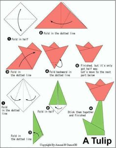 Origami Tulpe