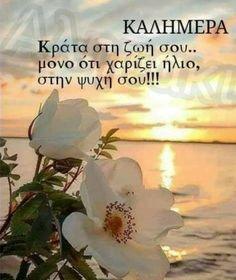 Good Morning Roses, Good Morning Good Night, Greek Language, Positive Inspiration, Greek Quotes, Poetry Quotes, Positive Thoughts, Wonderful Images, Thankful