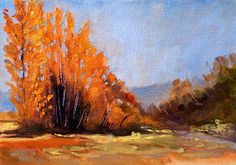 Nancy Merkle  Orting Valley in Pierce County, Washington State.