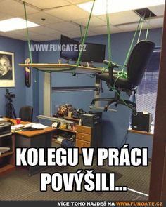 Kolegu v práci povýšili... Funny Images, Funny Pictures, Good Humor, Warrior Cats, Jokes Quotes, Funny Pins, Reaction Pictures, I Laughed, Laughter