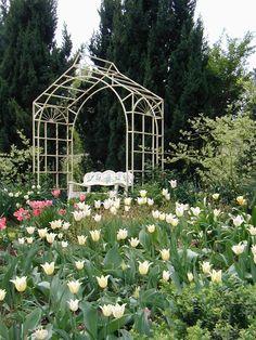 Pvc Pipe Garden Trellis