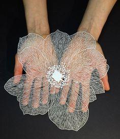 Nieuwe nauwgezette gesneden illustraties van bloemen op papier - EYEspired