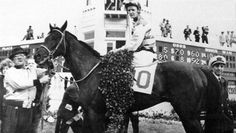 Carry Back: The People's Choice - America's Best Racing. The Jockey Club Carry Back, Carry On, Horse Racing, Race Horses, Thoroughbred, America, Club, People, Animals