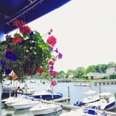 greenwich ct memorial day party