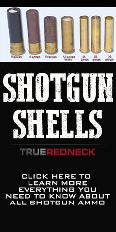 Learn everything you need to know on shotgun ammo, plus some really cool and fun videos on how creative you can get with what you fill shells with...warning do not try most of these videos at home!