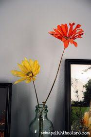 Polish The Stars: Preserve Flowers with Borax