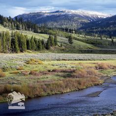 Lamar Valley in spring, Yellowstone National Park