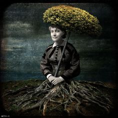 http://bethconklin.blogspot.com/2012/10/people-arent-trees.html