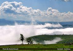 Misty Oak woods! by Khaled Esmaili on 500px