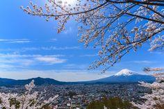 Mt. Fuji with Sakura Frame by Yokai via http://ift.tt/2rQwccB