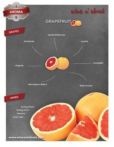 grapefruit Wine Vineyards, Wine Baskets, Wine Guide, Types Of Wine, Wine Cocktails, Wine Cheese, Wine And Beer, Sparkling Wine, Wine Making