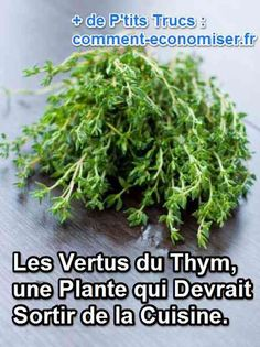 Le thym commun que l'on trouve dans nos cuisines (thymus vulgaris) est un ingrédient indissociable des remèdes de grand-mères. Ses effets et bénéfices pour la santé sont nombreux et reconnus. Découvrez l'astuce ici : http://www.comment-economiser.fr/vertus-thym.html?utm_content=buffera3dfe&utm_medium=social&utm_source=pinterest.com&utm_campaign=buffer