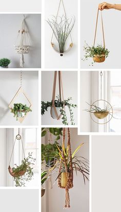 Jungalow Needs: Hanging Planters | Justina Blakeney - The Jungalow | Bloglovin'