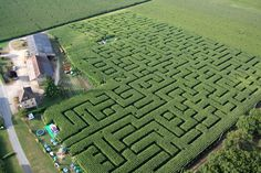 I have always wanted to do a maze like this! but I think here in WA I should start with a corn maze =) Labyrinth Maze, Picnic Blanket, Outdoor Blanket, Rock Garden Design, Corn Maze, Formal Gardens, Brain Activities, Art For Art Sake, Garden Spaces