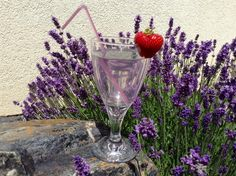 Alcoholic Drinks, Lavender, Homemade, Glass, Smoothie, Syrup, Alcohol, Home Made, Drinkware