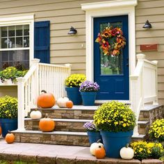 Add to the curb appeal of your house -- and increase its value ...