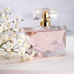 This fruity musk will captivate your natural self with a blend of Pomegranate, Jasmine and Amber. You can buy this product via our online Instant Brochure, link in our bio! Smell Good, Pomegranate, Perfume Fragrance, Fragrances, Perfume Bottles, Cosmetics, Jasmine, Beauty, Eve