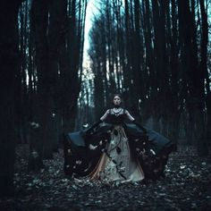 Skydancer Book II: Veil of Thorns // Bri ventures through an enchanted forest to…