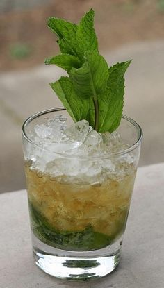 Mint Julep - One of those nice things about summer that makes up for it being so hot and sicky :)