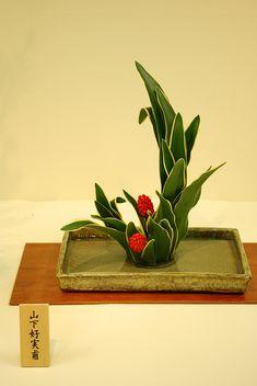 Ikebana by Mai Wakisaka Photography, via Flickr
