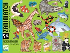Djeco - Állatmemória - Zanimatch - kártyajáték