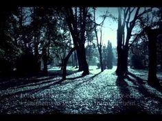 Book trailer for Ravenswynd Dreams (book 2)
