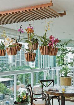 The hanging planters and rack on the ceiling complement each other so well.  I love this look - maybe on a patio?