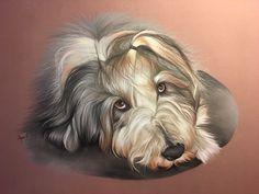 Chien Bearded collie, dessiné au pastel