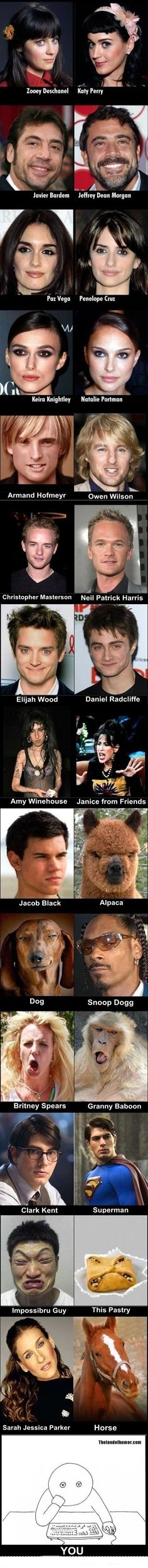 Celebrity look-a-likes. Super funny!