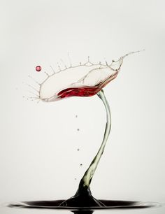 drop - Heinz Maier
