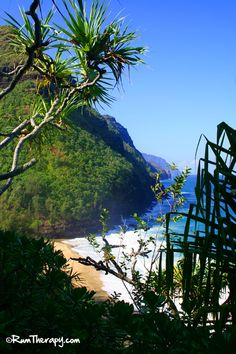 Hiking the Na Pali coast in Kauai. How far would you hike to see a beautiful, remote beach? Click to read more!