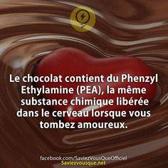 Le chocolat contient du Phenzyl Ethylamine (PEA), la même substance chimique libérée dans le cerveau lorsque vous tombez amoureux.   Saviez-vous que ?
