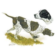 Pointer Dog HEAT PRESS TRANSFER for T Shirt Tote Sweatshirt Fabric Block #892 #AB